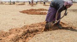 تغییرات اقلیمی خشکسالی